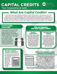 Capital Credit Information PDF document